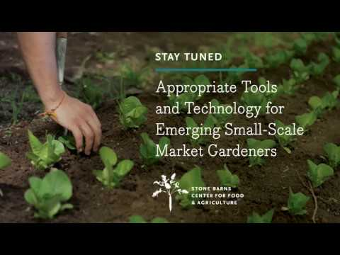 Appropriate Tools And Technology For Emerging Small-Scale Market Gardeners