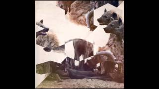 hyenah the wish manoo darkside remix freerange