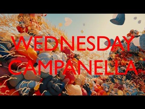 水曜日のカンパネラ『バク』