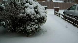 02.02.2009 Snow in England/ Śnieg w Anglii-nienormalne!