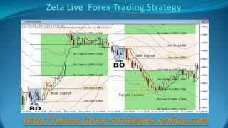Zeta Live  Forex Trading Strategy