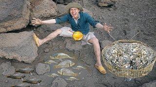Phát Hiện Vũng Nước Rất Nhiều Cá Mắc Kẹt.Unbelievable Find Catfish & Catch A Lot Of Fish In Hole