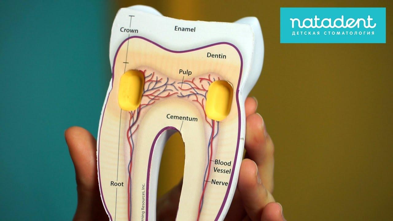 особое внимание чем обезболить зубную боль после пульпита у ребенка тепло поможет