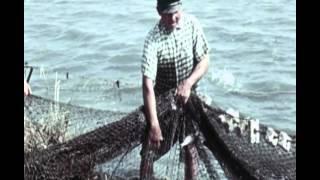 Аральское море (Казахфильм, 1963)(, 2016-01-20T16:38:24.000Z)