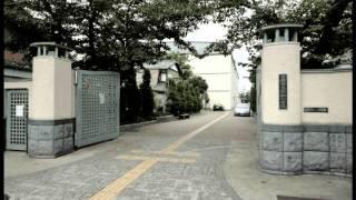 京都市上京区 仁和小学校.avi