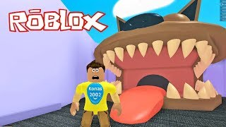Roblox Escape The Pet Store Obby ! || Roblox Gameplay || Konas2002