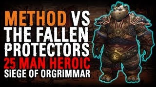 Method vs The Fallen Protectors (25 Heroic)
