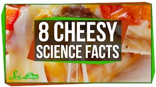 Download 8 Cheesy Science Facts Mp3 and Videos