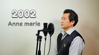 Anne Marie - 2002 / cover by Hongzpop
