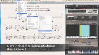 Gayageum VSTi in Sibelius Software (시벨리우스 프로그램과 국악 가상 악기)