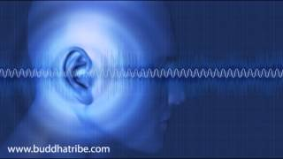 Solfeggio Frequencies: Healing Sounds Brain Waves Fibonacci Sequence