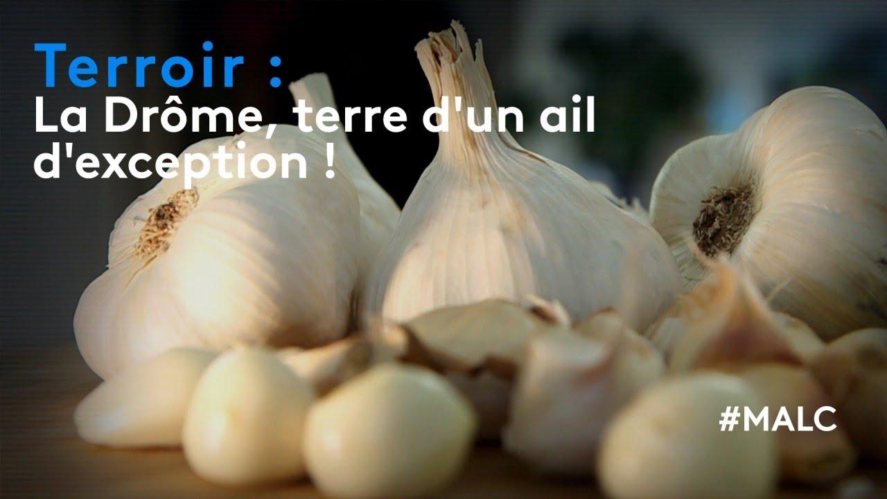 Download Terroir : le Drôme, terre d'un ail d'exception !
