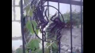 видео Кованые элементы для сада