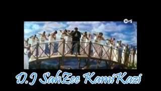 Rind Posh Maal (Mission Kashmir) Remix