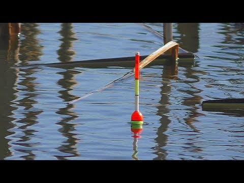 Рыбалка. Ловля карася на поплавок весной [в марте ]. My Fishing