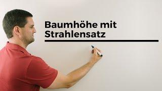 Baumhöhe mit Strahlensatz und Geodreieck bestimmen, Ähnlichkeit, Mathe by Daniel Jung