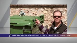 Yvelines | La bergerie nationale de Rambouillet lance une chasse au lapin en ligne