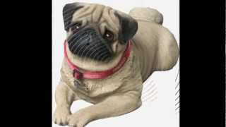 http://www.cmbgift.com/sandicast-animal-sculptures/dogs All Sandica...