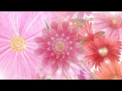 Видеофон цветы