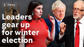 Will Brexit dominate voters' concerns in winter election?