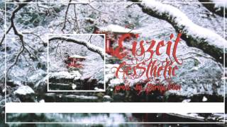 AE$THETIC - Eiszeit (prod. by Barnacle Boi) (Official Lyric Video)