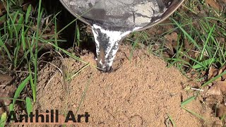 Casting Another Fire Ant Colony with Molen Aluminum (Cast #061)