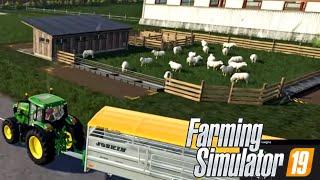FARMING SIMULATOR 19 #5 - NUOVO RECINTO CON PECORE - NORDFRIESISCHE MARSCH GAMEPLAY ITA