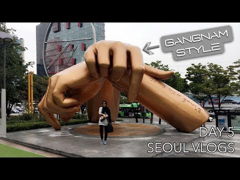 Seoul Vlogs | Day 5 - Dinner with the Ambassador and a Short Walk Up to the North!