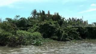 Дельта реки Меконг(Дельта Меконга - это яркий, пестрый и насыщенный мир. Здесь можно посмотреть на все разнообразие сельской..., 2014-09-18T16:07:07.000Z)
