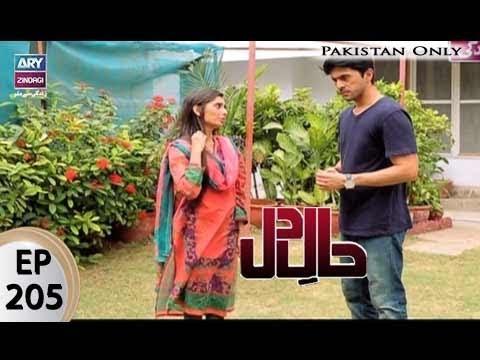Haal E Dil -  Ep 205 - ARY Zindagi Drama