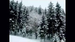 Winter in Georgia Borjomi giorgi chaladze