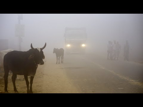 Watch: Fairy Smog Brings Zero Visual Effect on India's street