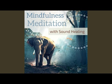 Top Tracks - Mindfulness