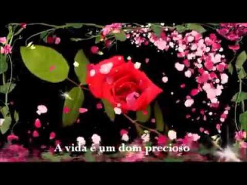 Bom Dia Mensagens Com Imagem De Flores Youtube