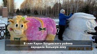 UTV. Новости запада Башкирии за 25 декабря