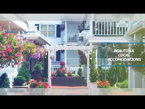 Long Island Holistic Dentist| Leonard T Fazio, DDS| Atlantic