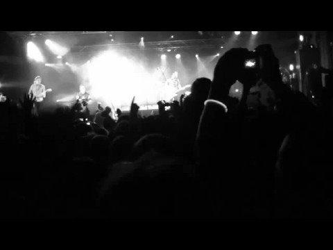 The Panics - 'Don't Fight It' live