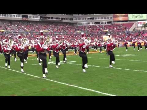 Wisconsin Marching Band - Outback Bowl Pre-Game  1-1-2015