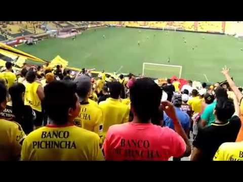 Sur oscura vamos amarillo vamos a ganar