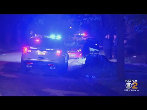 2 Shot In Penn Hills