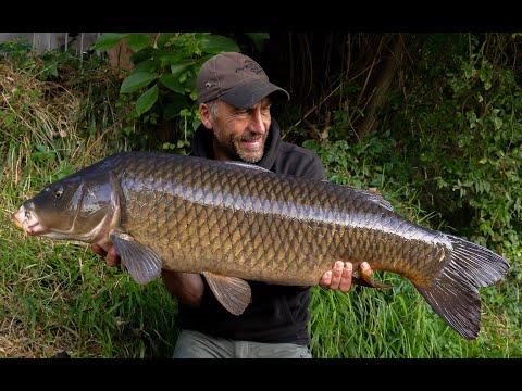 River Carping Adventure - Carp Fishing Vlog September 2019