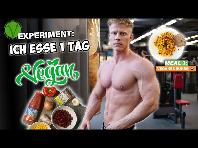 Ich esse EINEN TAG VEGAN! Full Day of Eating Experiment