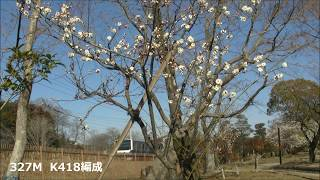 JR常磐線 2019/03/10