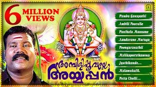 Ambilipoovalle Ayyappan - Devotional Songs - Malayalam