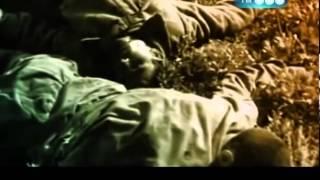 Жуков преступник Второй мировой войны