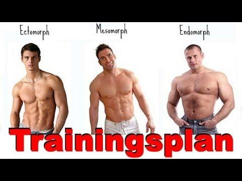 Trainingplan aufbauen nach Körpertypen