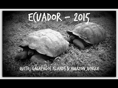 Trip to Ecuador - Galapagos, Quito & Jungle Eco-Lodge