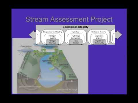 Evaluating the Performance of Stream Restoration Projects in Ohio