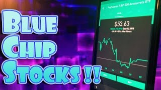 Robinhood APP - BLUE CHIP STOCKS = SAFETY and GROWTH!