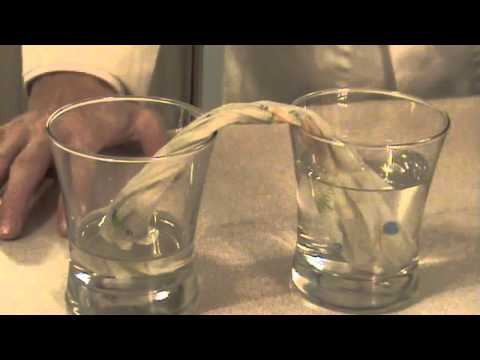 Capillary Action Experiment